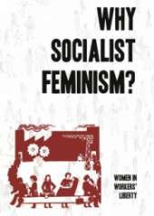 "Book Cover ""Why Socialist Feminism?"" in black text on a white background above ""Capitalism also Depends on Domestic Labour"" cartoon depicting women's social reproductive role in society, originally from See Red Women's Workshop."