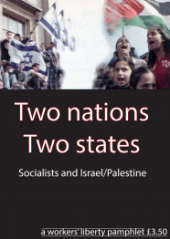 "Pamphlet Cover ""Two Nations Two States"" under a side by side of people waving Israeli and Palestinian flags."