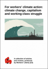 "Pamphlet Cover ""For Workers' Climate Action: Climate Change, Capitalism and Working-class Struggle"" above an image of factory smoke becoming the foam on the wave of climate change"
